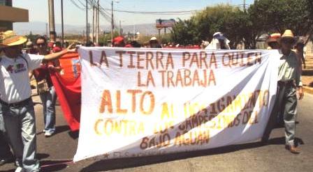 Comisión denuncia impunidad en asesinatos de campesinos hondureños